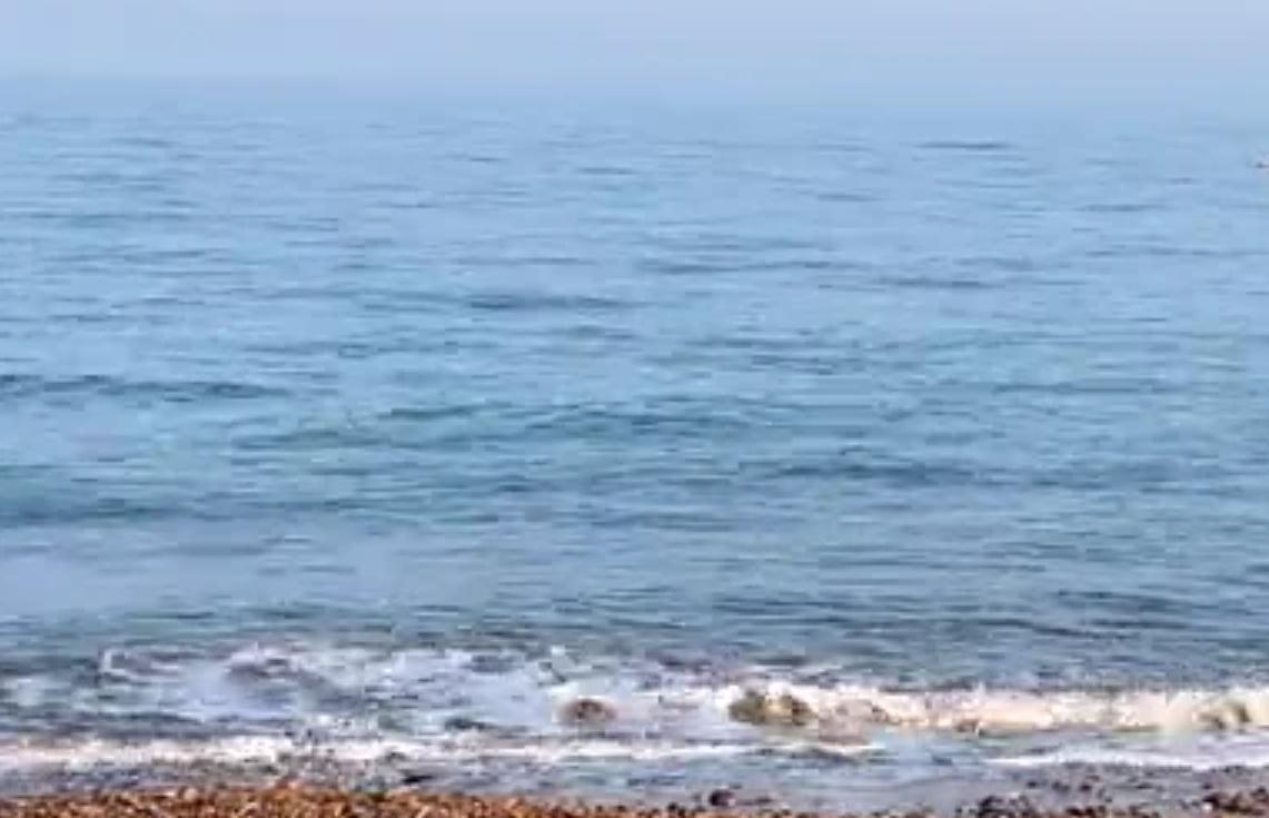 Eva Kristlova - Beach meditation