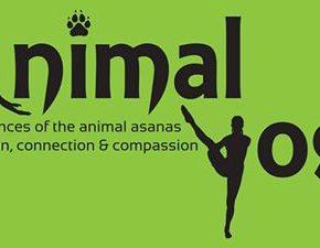 Animal Yoga